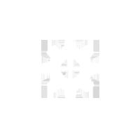 rust-icon